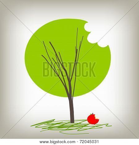 Apple Tree, Knowledge