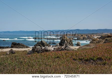 The coast of Fort Bragg, California