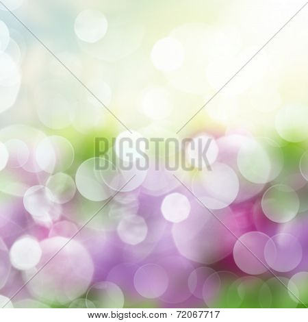Blue  Festive garden  background with lights