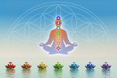 picture of kundalini  - Illustration of meditation with the seven chakras - JPG