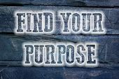 foto of vivacious  - Find Your Purpose Concept text on background - JPG