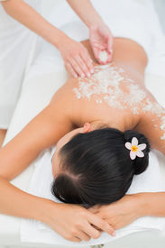 image of scrubs  - Peaceful brunette getting a salt scrub beauty treatment in the health spa - JPG