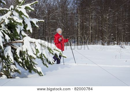 Woman,  Europeans, Walks In The Winter Forest