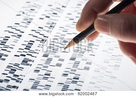 Interpreting Dna Gel