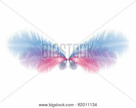 Beautiful Soft Wings With Blue And Pink Feathers. Eps10