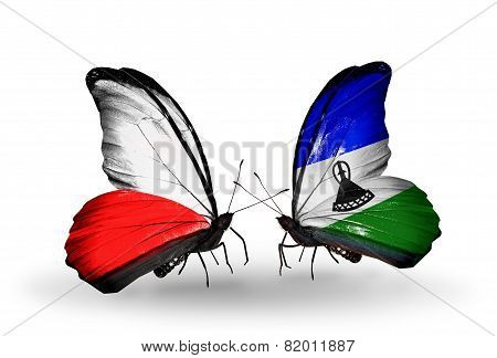 Two Butterflies With Flags On Wings As Symbol Of Relations Poland And Lesotho