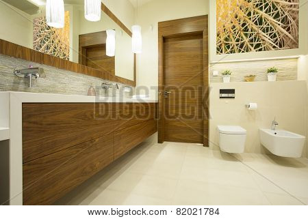 Contemporary Washroom