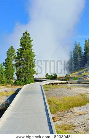 Walkway Through The Upper Geyser Basin Of Yellowstone National Park, Wyoming
