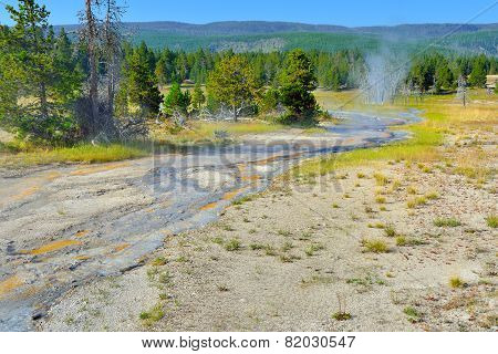 Upper Geyser Basin Of Yellowstone National Park, Wyoming