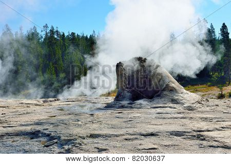 Steaming Grotto Geyser In Upper Geyser Basin Of Yellowstone National Park, Wyoming