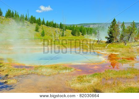 Upper Geyser Basin Valley Of Yellowstone National Park, Wyoming