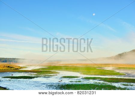 Moon In The Morning Sky In Hayden Valley With Fog In Yellowstone National Park In Summer