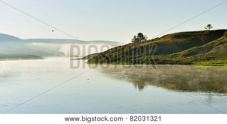 Birds Flying In The Fog Over The River In Hayden Valley Of Yellowstone National Park In Summer