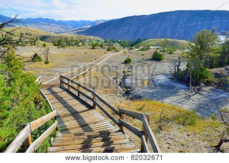 Wooden Walk Trail In Mammoth Hot Springs Area Of Yellowstone National Park, Wyoming