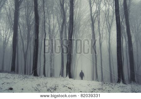 Man walking in winter forest with fog