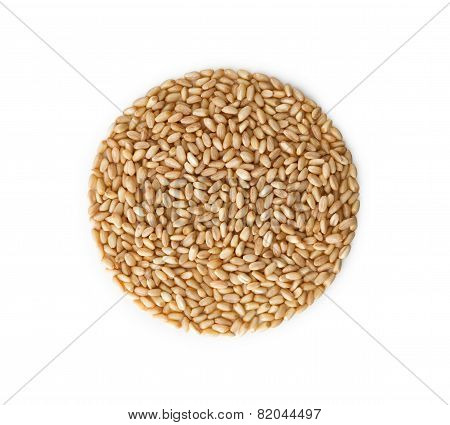 Wheat Pile Heap, Isolated