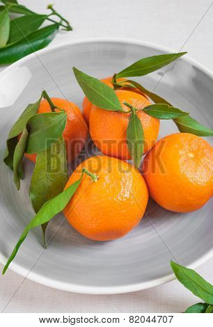Tangerines With Green Leaves On White Wooden Background. Close Up