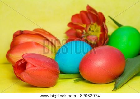 Colorful Painted Easter Egg And Tulip Against  Background