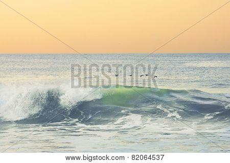 Morning at the ocean