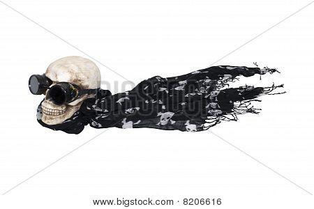 Flying Steampunk Skull