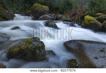 Winter Creek