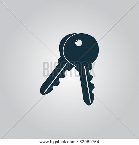 Keys sign icon. Unlock tool button