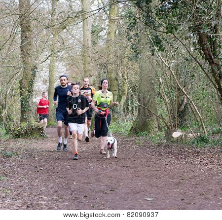 Runners  And a Dog