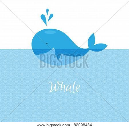 Blue Whale With Sea