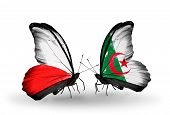 pic of algeria  - Two butterflies with flags on wings as symbol of relations Poland and Algeria - JPG