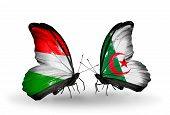 foto of algeria  - Two butterflies with flags on wings as symbol of relations Hungary and Algeria - JPG