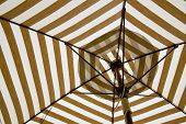 image of tabernacle  - Under the canvas Umbrella white and brown color background - JPG