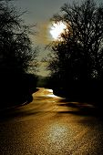 stock photo of moonlight  - dark road at night guided by moonlight - JPG