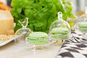 image of pesto sauce  - pesto macaroons with pesto sauce ingredients in the background - JPG