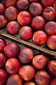 foto of stall  - Nectarines in crates on a market stall - JPG