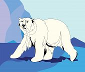 image of polar bears  - Polar bear among ice mountain - JPG