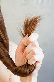 image of split ends  - The problem of split ends of hair for women  - JPG