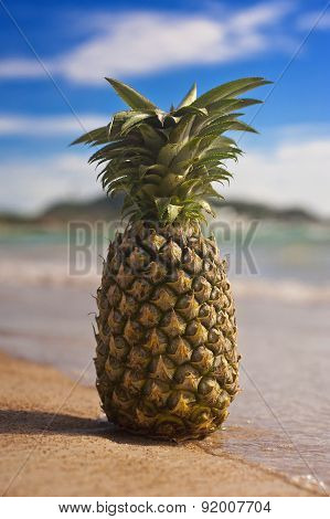Tropical pineapple in the sea on an exotic beach.