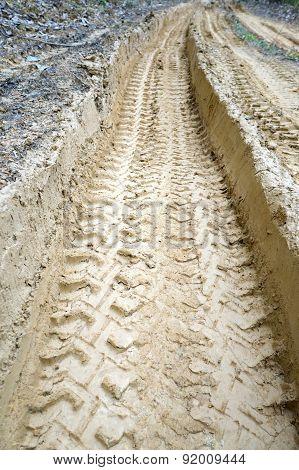 Wheel Tracks On Muddy Road