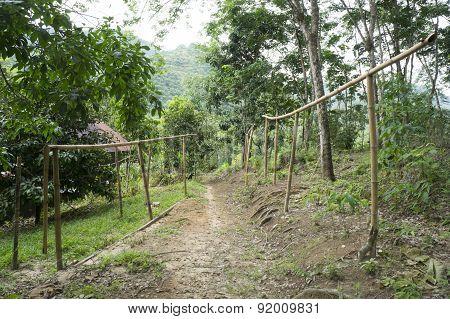 Empty Bamboo Hanger For Rubber Sheet