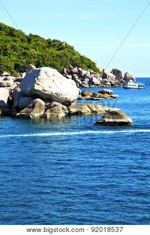 Boat  Stone In Thailand Kho Tao Bay Abstract Of A  Water   South China Sea