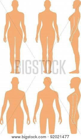 Woman mannequin outlined silhouette torso