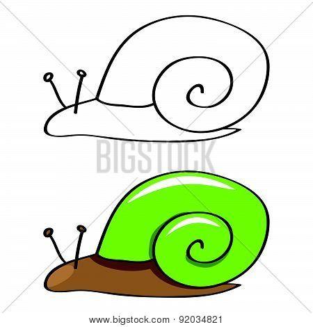 Funny Snail. Vector