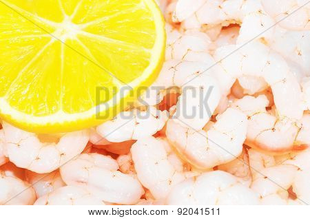 fresh shrimps with a lemon