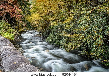 Great Smoky Mountains Stream