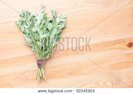 Fresh Oregano On A Light Wooden Background
