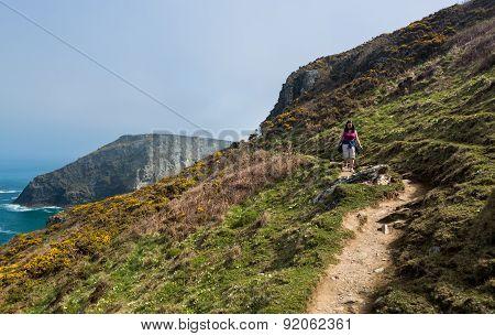 South West Coast Path Near Tintagel Cornwall