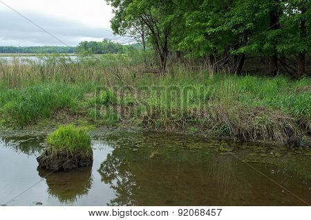 Minnesota Valley Wetlands And Forest