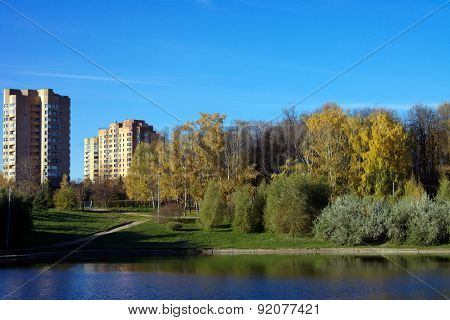 Park In Gold Fall