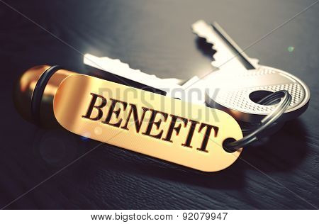 Benefit Concept. Keys With Golden Keyring.