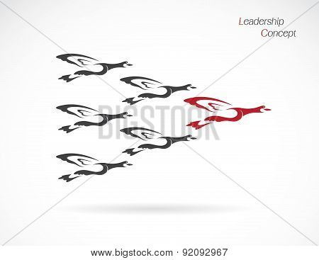 Flock Of Wild Ducks Flying, Leadership Concept